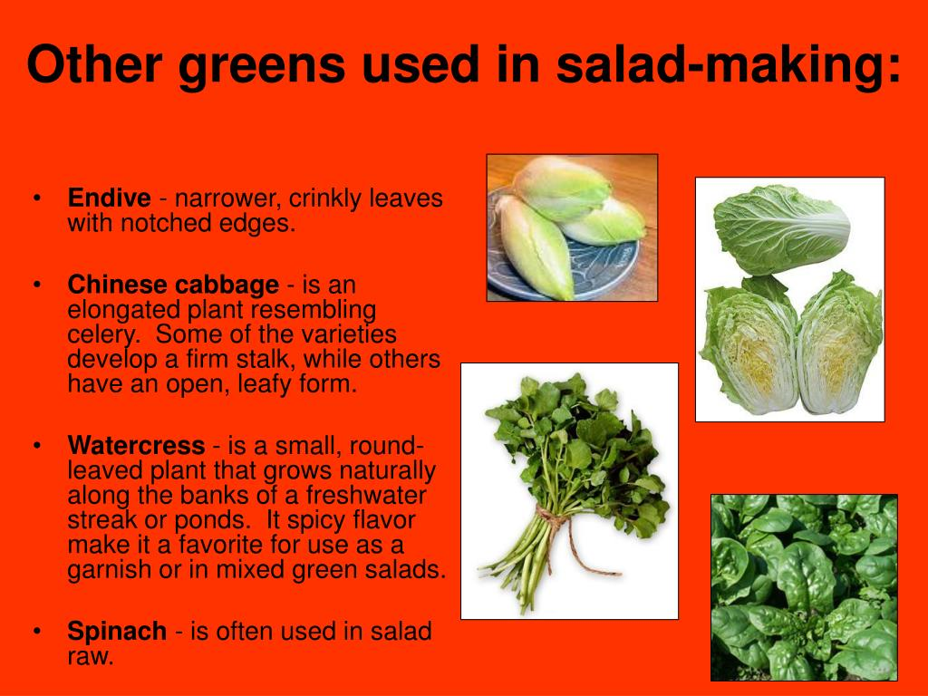 Other greens used in salad-making: