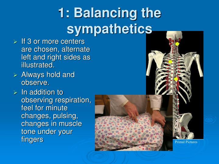 1: Balancing the sympathetics