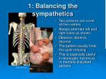 1 balancing the sympathetics3