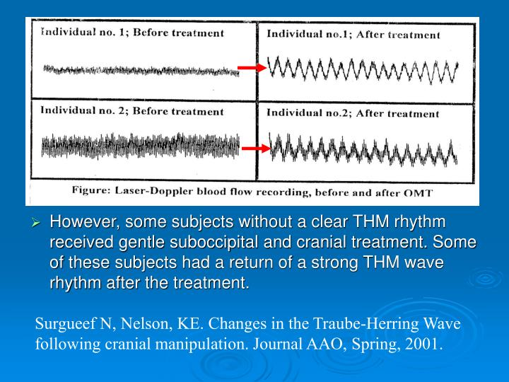 However, some subjects without a clear THM rhythm received gentle suboccipital and cranial treatment. Some of these subjects had a return of a strong THM wave rhythm after the treatment.