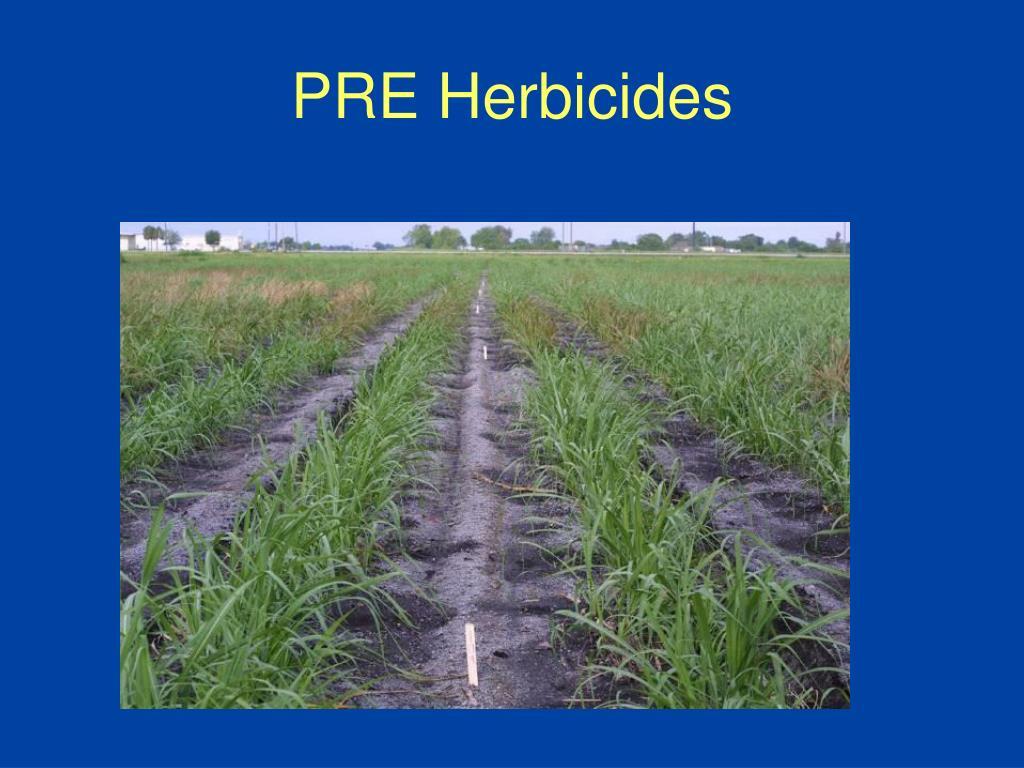 PRE Herbicides