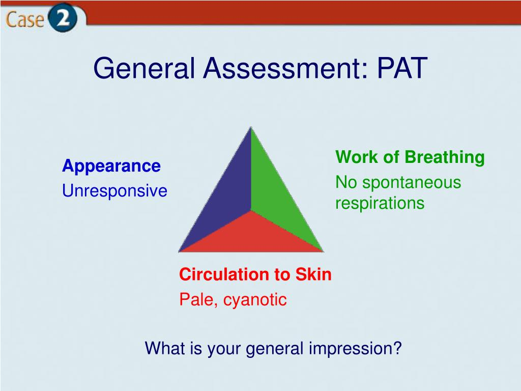 General Assessment: PAT