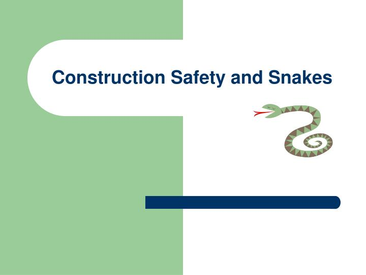 Construction safety and snakes