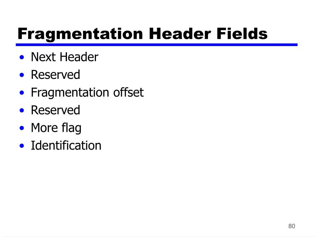 Fragmentation Header Fields