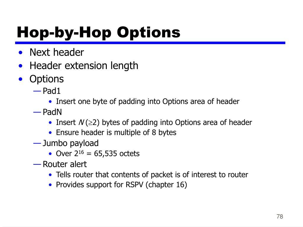 Hop-by-Hop Options