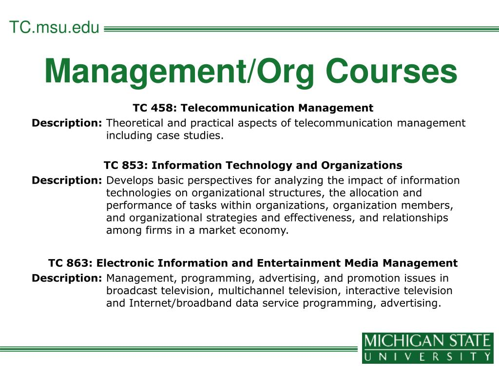 Management/Org Courses
