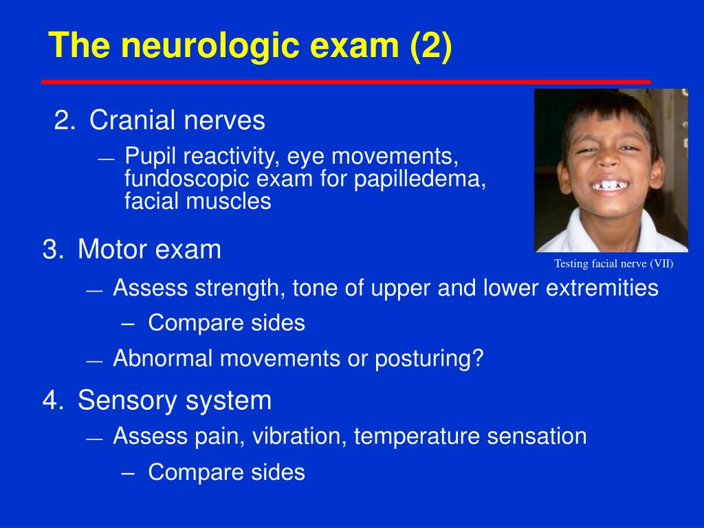 The neurologic exam (2)