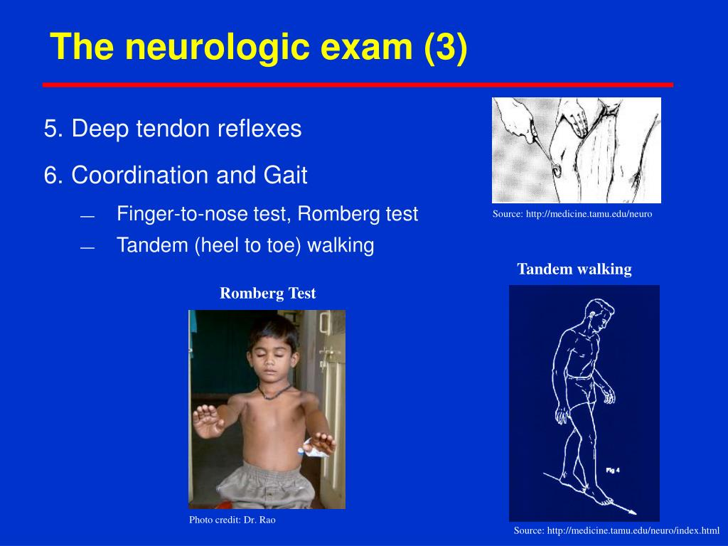 The neurologic exam (3)