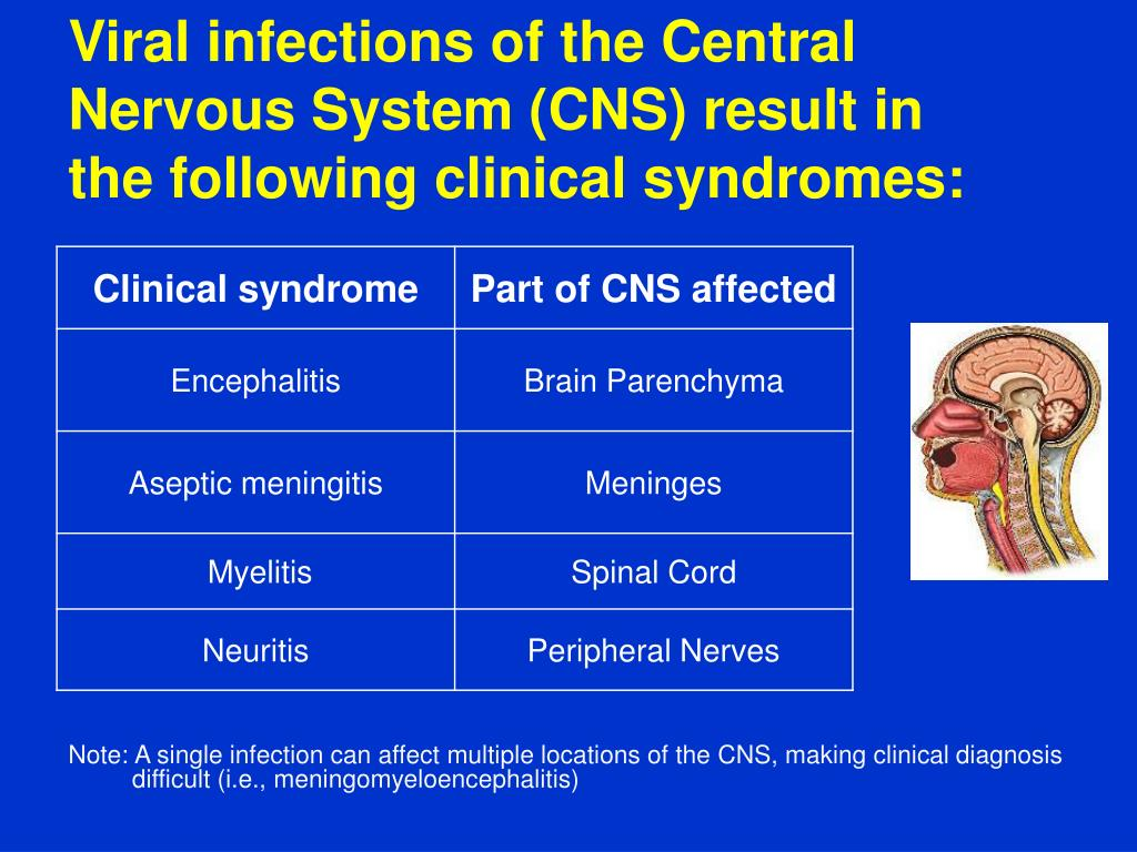 Viral infections of the Central Nervous System (CNS) result in the following clinical syndromes: