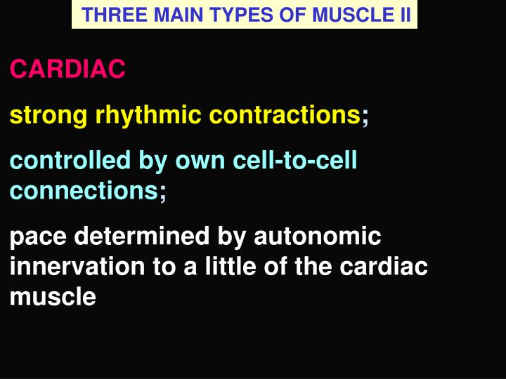 THREE MAIN TYPES OF MUSCLE II