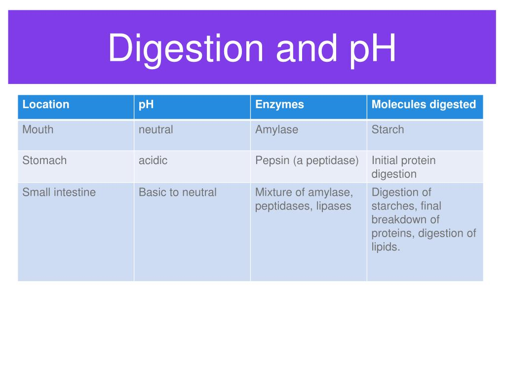 Digestion and pH