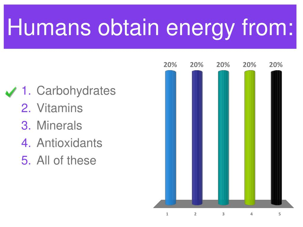 Humans obtain energy from: