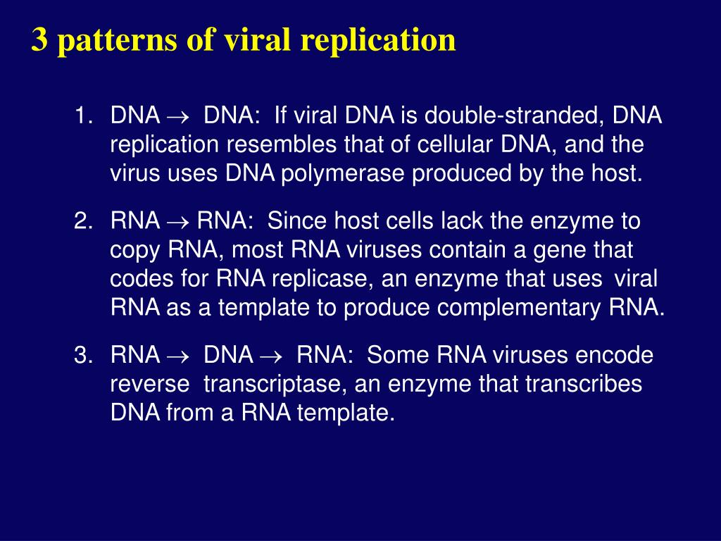 3 patterns of viral replication
