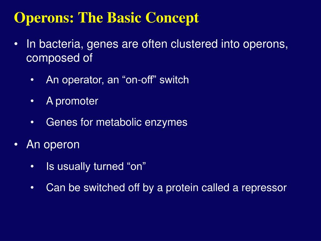 Operons: The Basic Concept