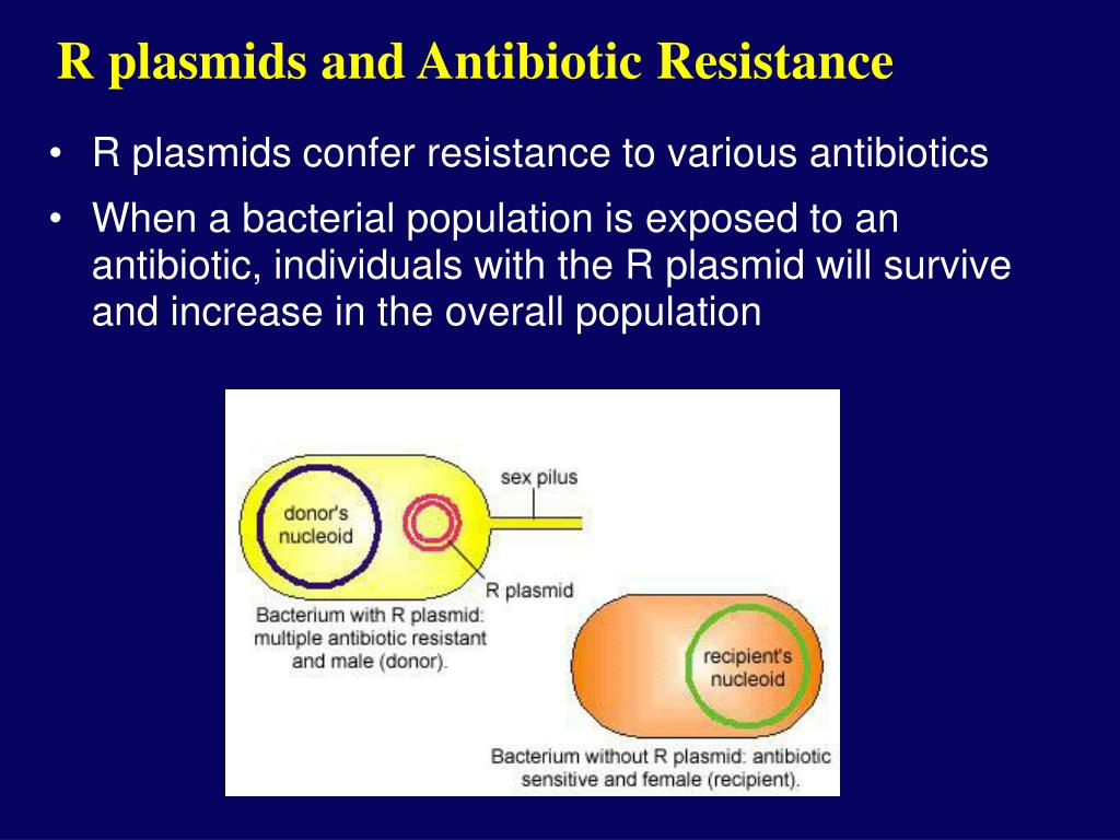 R plasmids and Antibiotic Resistance