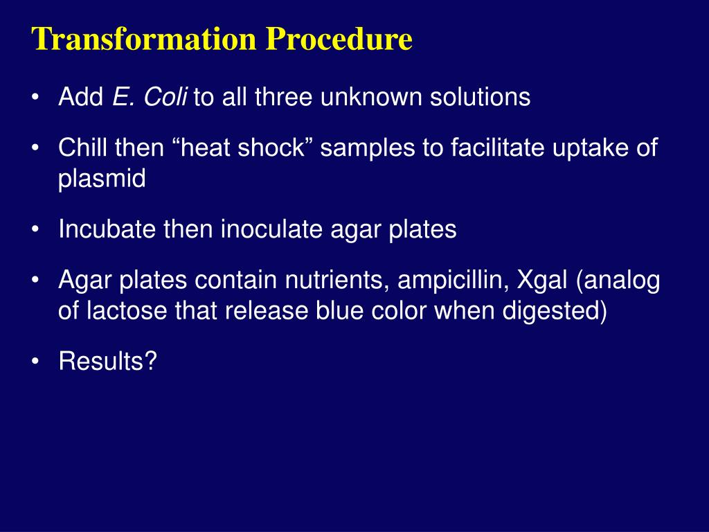 Transformation Procedure