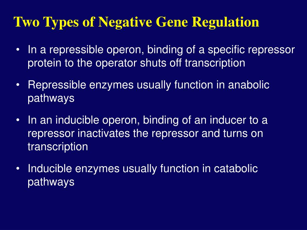 Two Types of Negative Gene Regulation