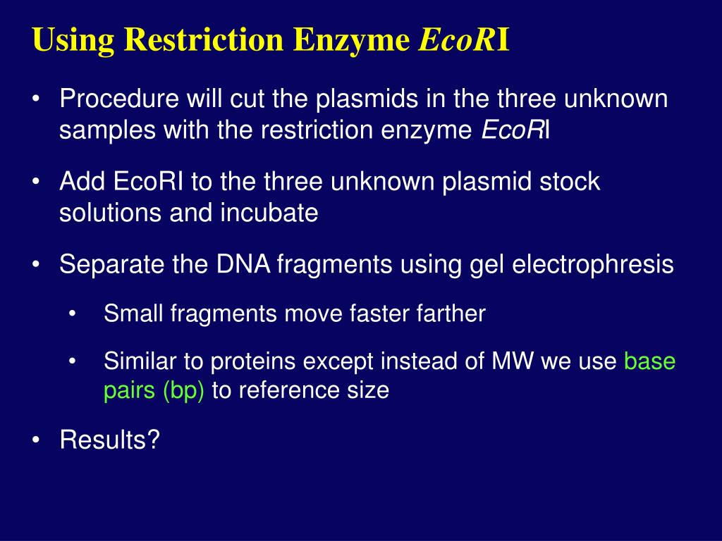 Using Restriction Enzyme