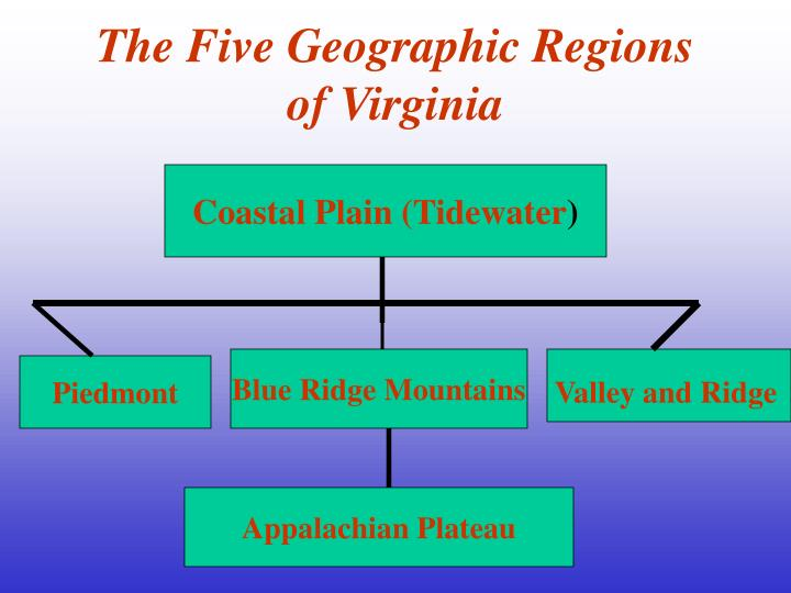 The five geographic regions of virginia l.jpg