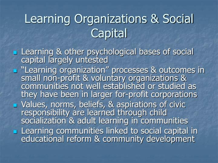 Learning Organizations & Social Capital