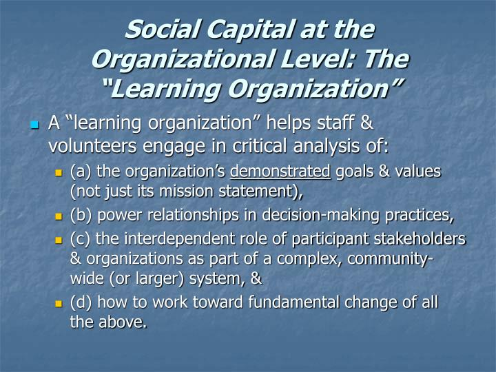 "Social Capital at the Organizational Level: The ""Learning Organization"""