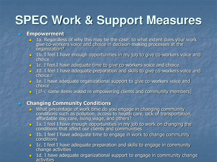 SPEC Work & Support Measures