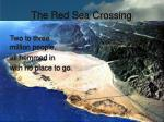 the red sea crossing37
