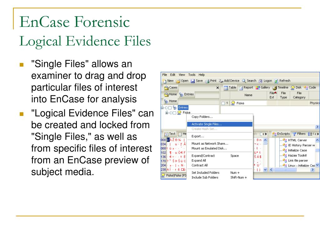 """Single Files"" allows an examiner to drag and drop particular files of interest into EnCase for analysis"