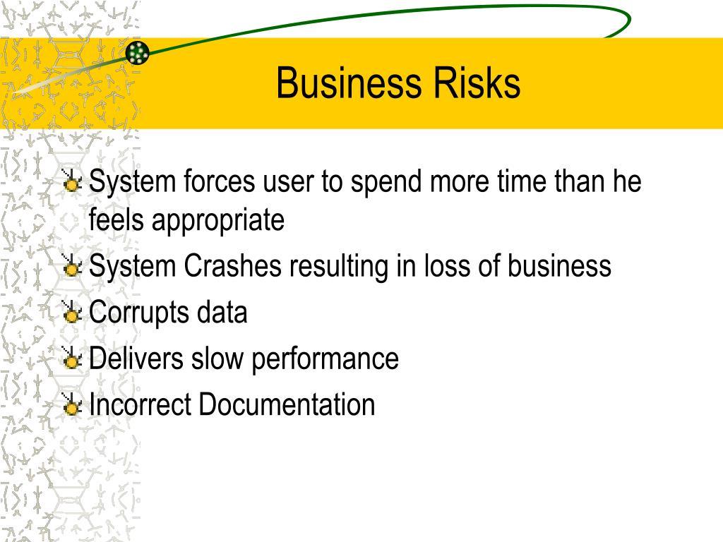 Business Risks