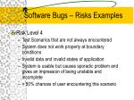 software bugs risks examples5