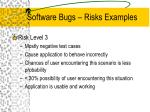 software bugs risks examples6