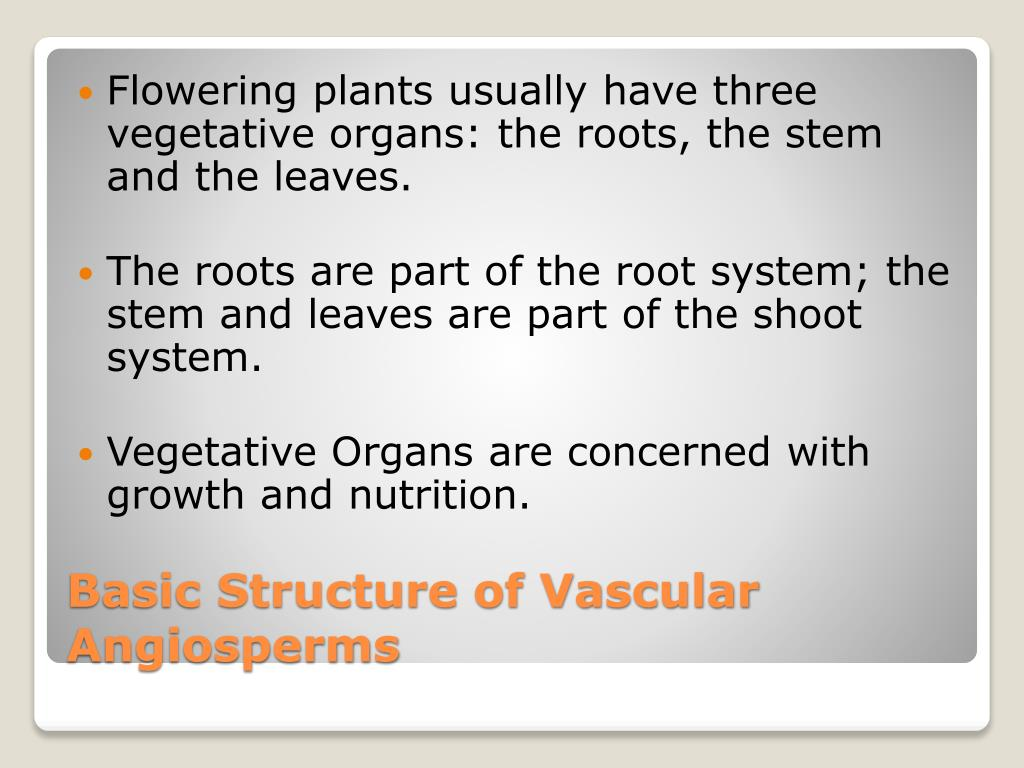 Flowering plants usually have three vegetative organs: the roots, the stem and the leaves.