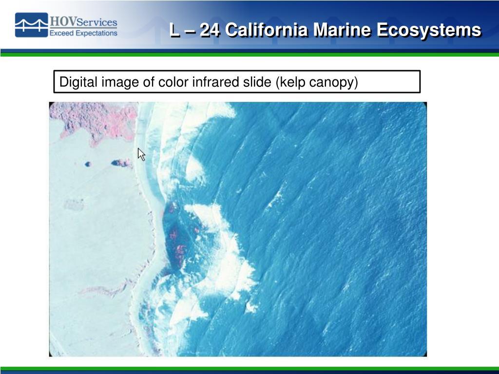 L – 24 California Marine Ecosystems