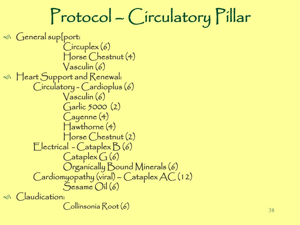 Protocol – Circulatory Pillar