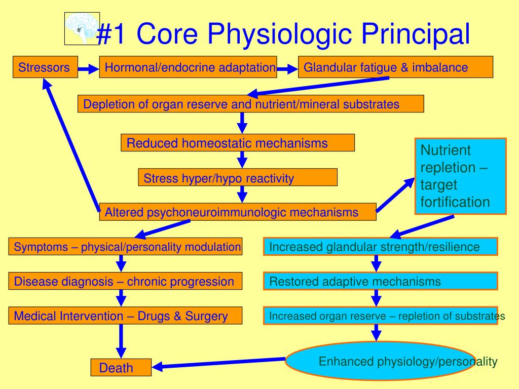 #1 Core Physiologic Principal