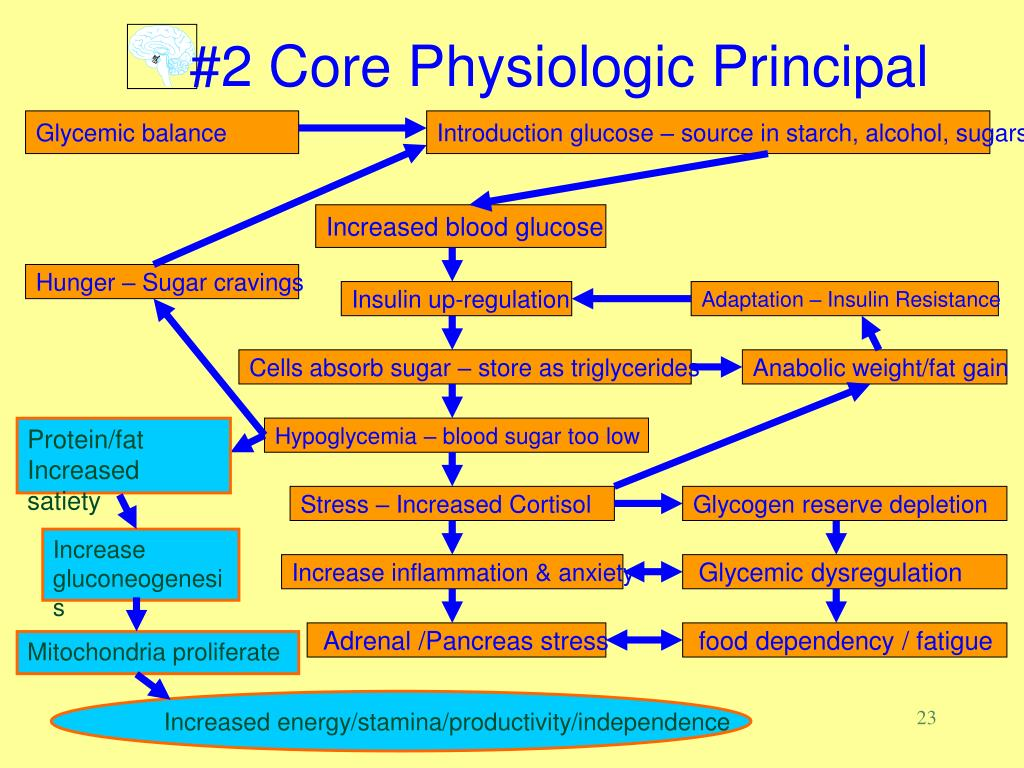 #2 Core Physiologic Principal