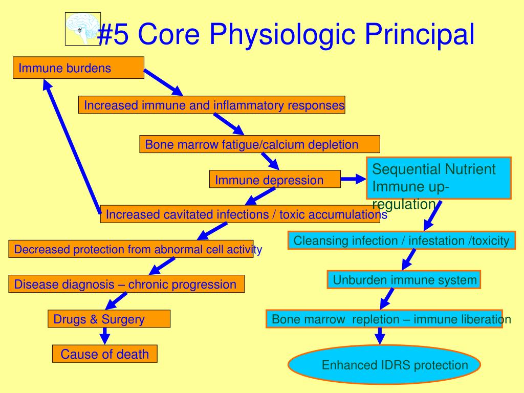 #5 Core Physiologic Principal