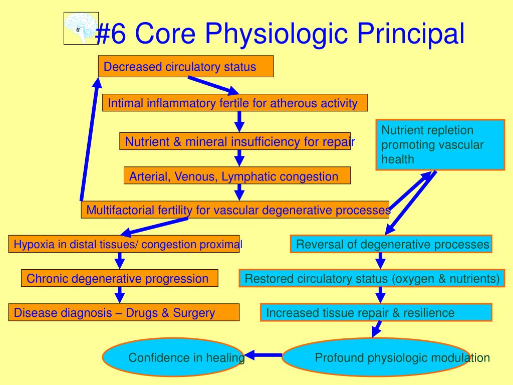 #6 Core Physiologic Principal