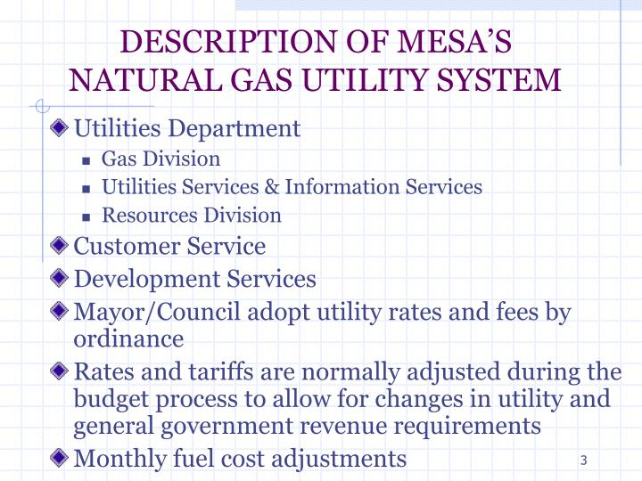 Description of mesa s natural gas utility system