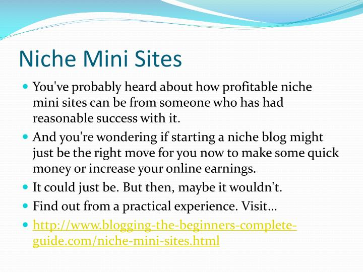 Niche mini sites