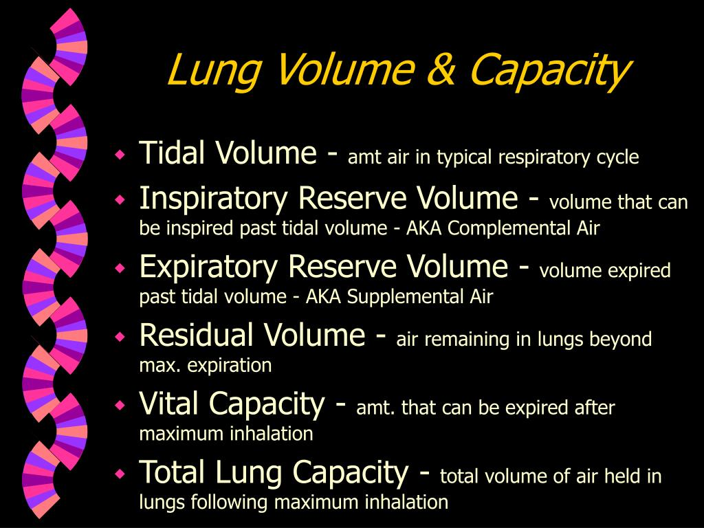 Lung Volume & Capacity