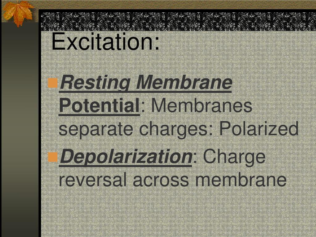 Excitation: