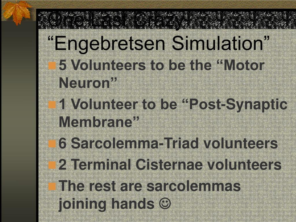 "One Last Crazy ""Engebretsen Simulation"""