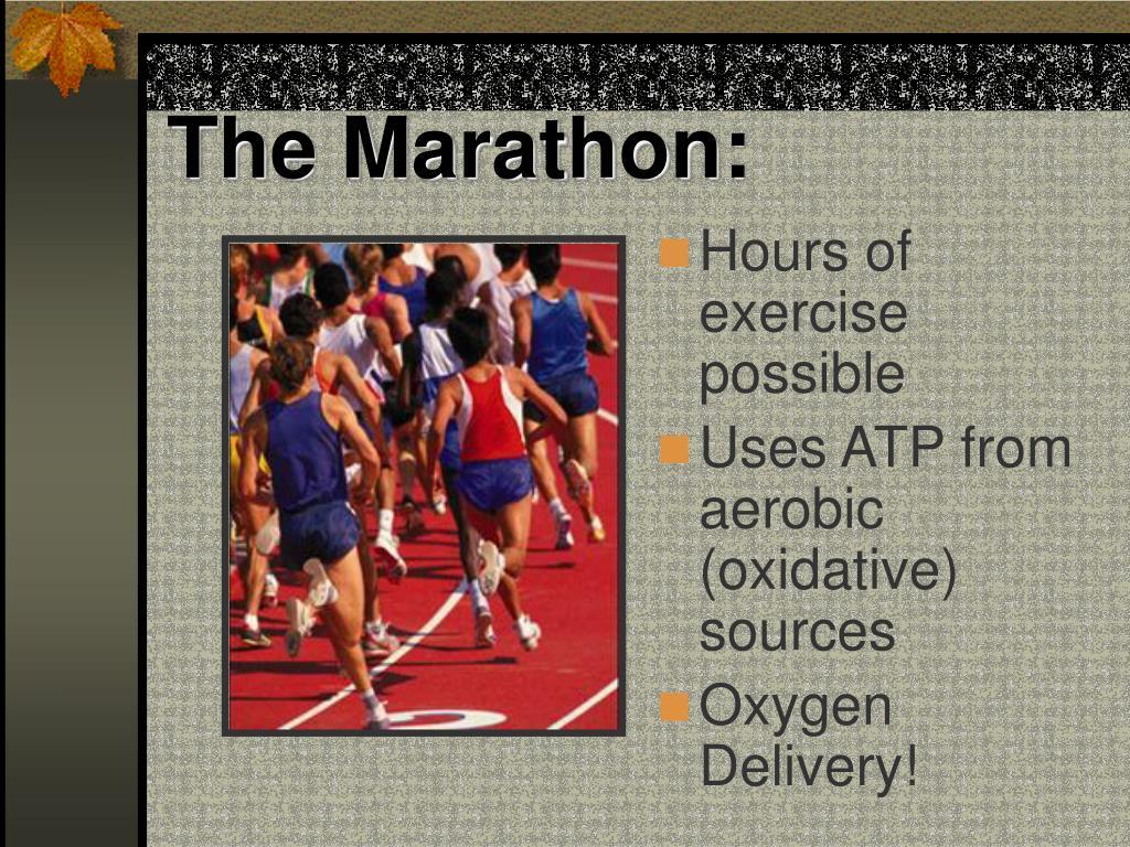 The Marathon: