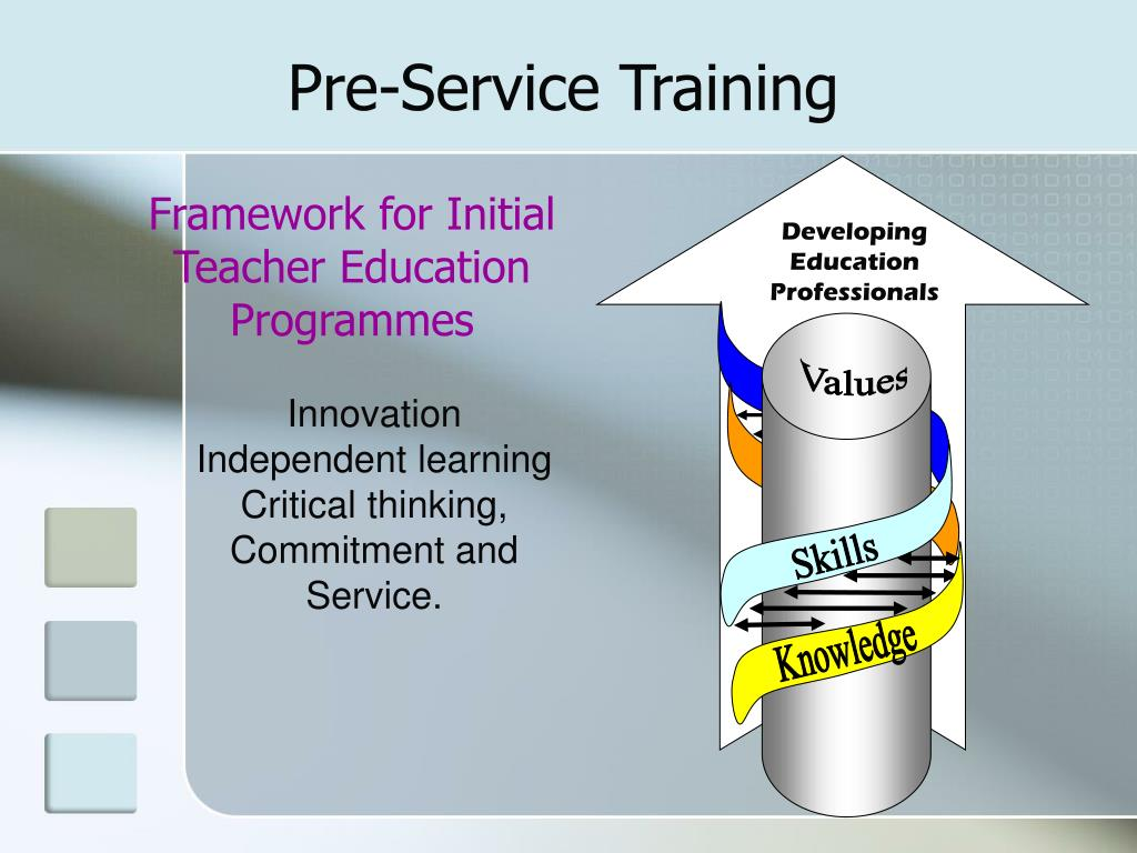 Developing Education Professionals