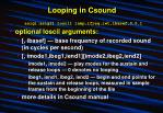 looping in csound18