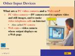 other input devices22