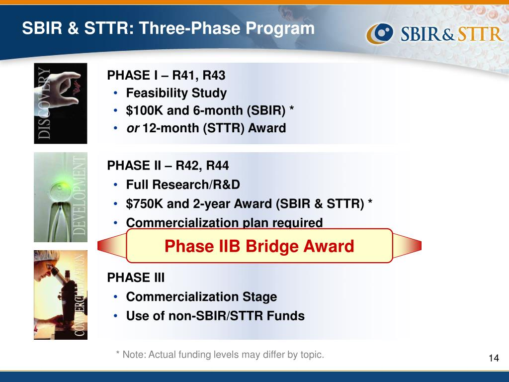 sbir business plan