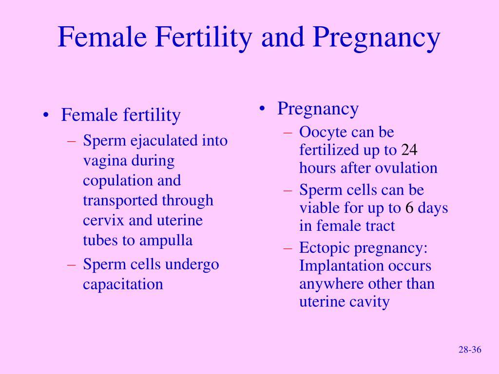Female fertility