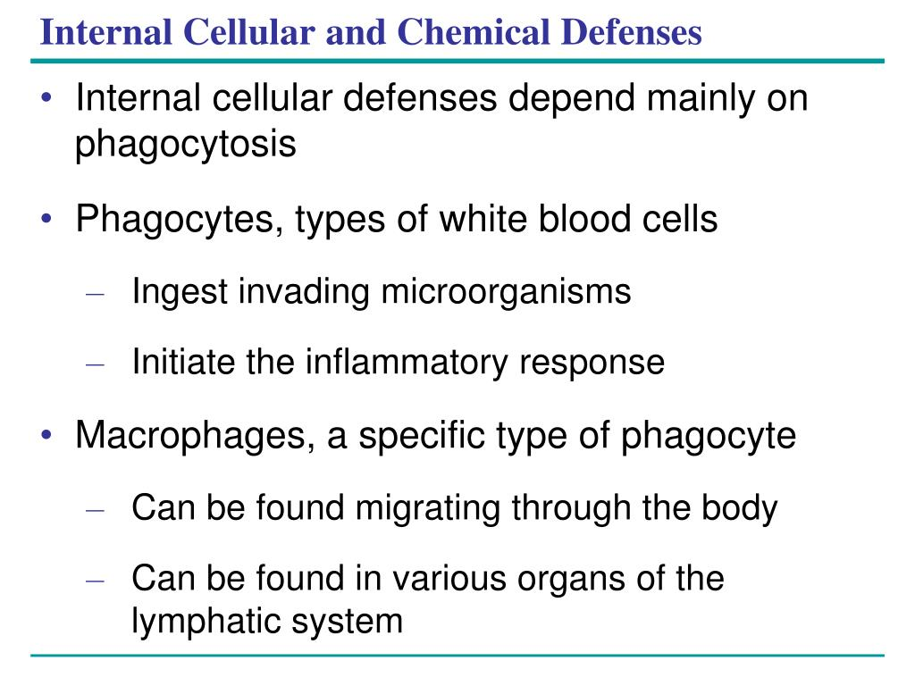 Internal Cellular and Chemical Defenses